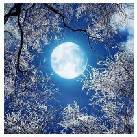 лунный календарь на январь 2022 года